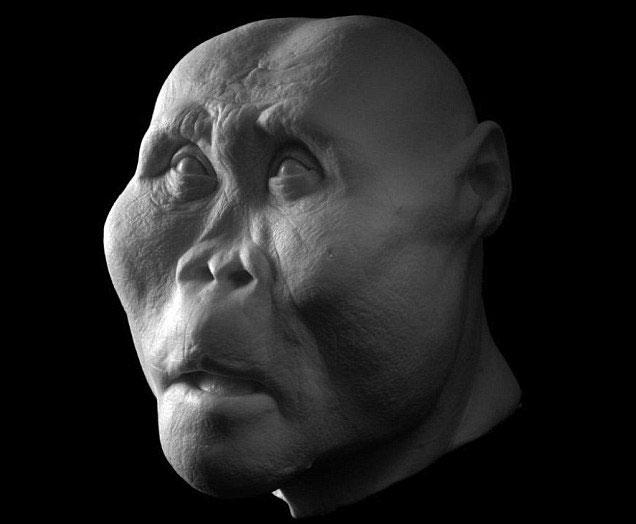 Khuôn mặt của Paranthropus boisei cách đây 2 triệu năm trước với đặc tính nổi bật là có răng hàm to và men răng dày nhất.