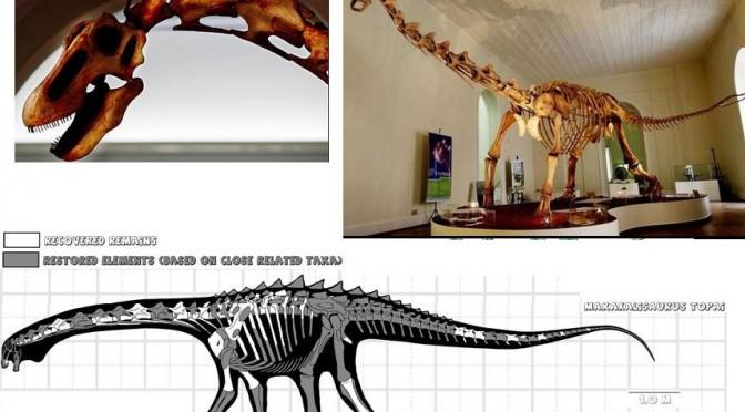 Một bộ xương của loài khủng long ăn cỏ Maxakalisaurus topai, nặng 9 tấn và dài 13m