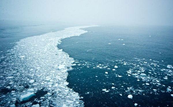 Những tảng băng trôi dọc theo một dòng hải lưu gần Nam Cực.