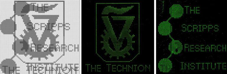 """Các nhà khoa học đã phát triển """"máy tính sinh học"""" có khả năng lập và giải mã hình ảnh trên vi mạch ADN."""
