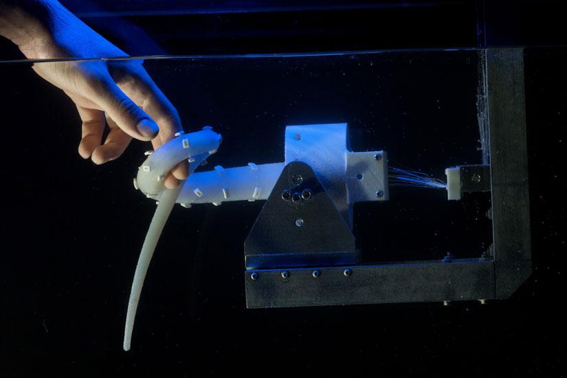 Robot bạch tuộc quấn chặt lấy tay người