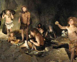 Người Neanderthal là một nhánh trong sự phát triển các loài linh trưởng, trong đó có con người. Đây cũng chính là một giống người họ hàng đã tuyệt chủng của chúng ta.