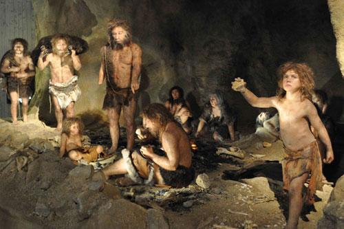 Cánh tay phải của người Neanderthal mạnh mẽ chủ yếu do cạo da thú chứ không phải do ném giáo.