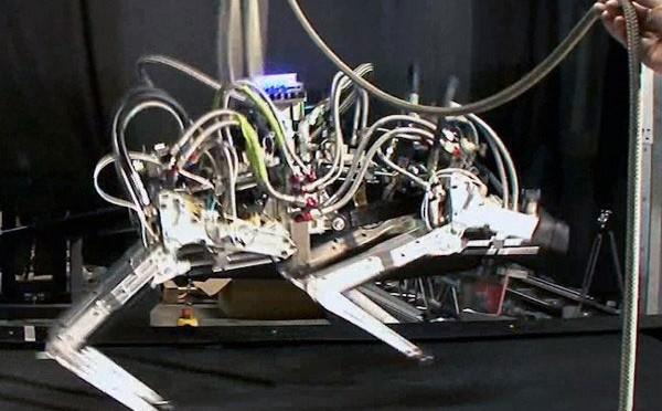Robot Cheetah có thể phi nước đại với vận tốc 29km/h