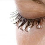 Trong vương quốc động vật, con người là loài duy nhất khóc vì cảm xúc.