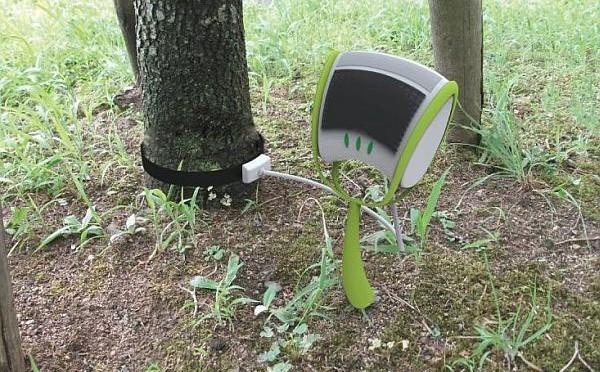 Sprout đo lượng CO2 mà cây xanh hấp thụ hàng ngày