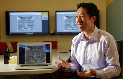 Andrew Ng trình diễn khả năng nhận biết mèo của bộ não nhân tạo