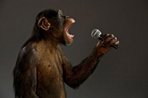 Khả năng ngôn ngữ của con người xuất phát từ cái nhăn mặt biểu cảm của loài khỉ.