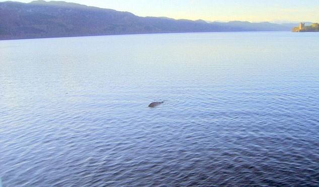 Thuyền trưởng George Edwards khẳng định đây chính là con quái thú sống tại hồ Loch Ness mà nhiều người đang tìm kiếm.