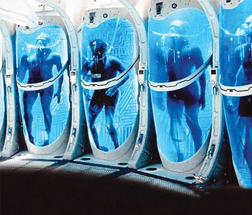 Đến nay, vẫn chưa rõ đây là chuyện chỉ có trong khoa học viễn tưởng hay thật sự là một phương pháp giúp con người bất tử